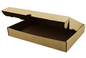Warensendung Karton 320 x 225 x 50 mm