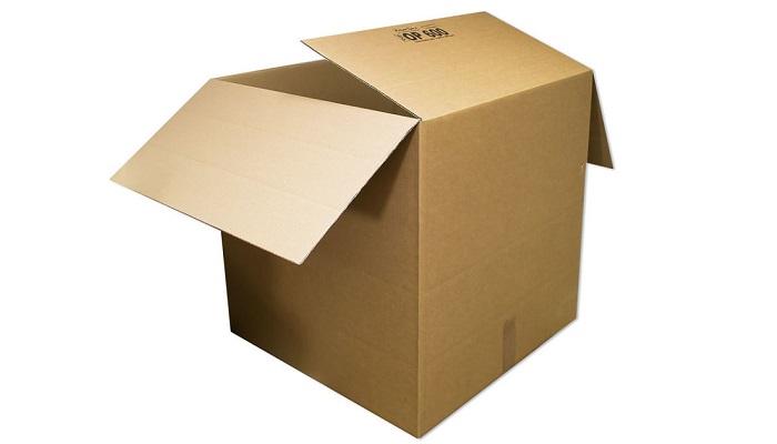 DHL Karton für Paket M und L
