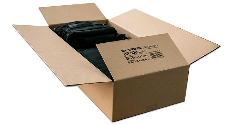 Karton für DHL Päckchen M und Paket S